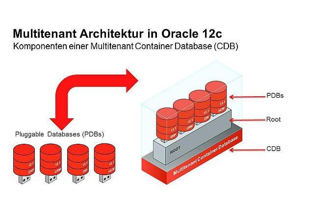 Komponenten einer Multitenant Container Datenbank