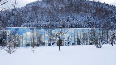Grüne Erde Welt - Winter Impression