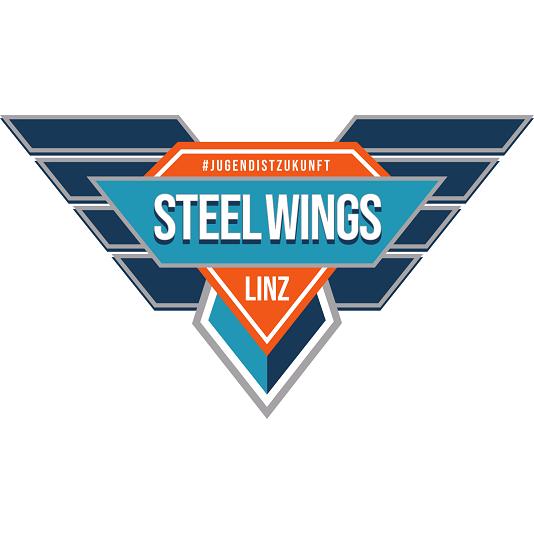 Steel Wings Linz